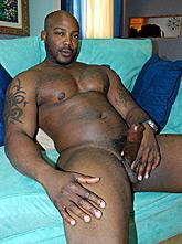 Muscular Black Stud